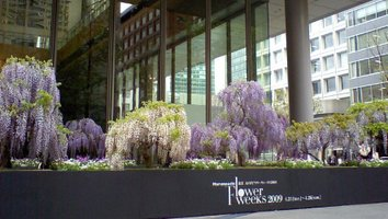 Fuji_garden