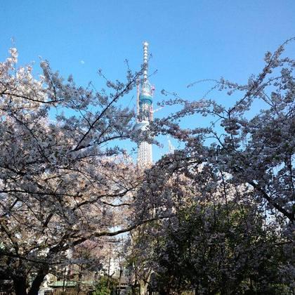 Sumida_park