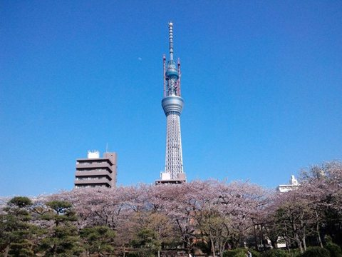 Sumida_park_2