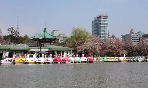 Swan_boat