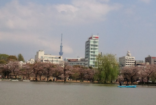 Yodobasiskytree_tower