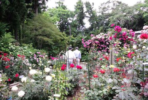 Mritos_private_garden